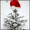 Аватар Елочка в шапочке (© Mirrorgirl), добавлено: 04.12.2008 20:20