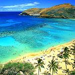 Аватар остров, пляж, море, солнцек, лето, жара (© Леона), добавлено: 09.06.2008 15:08