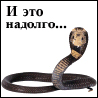 Аватар И это надолго...змея (© ), добавлено: 14.05.2008 12:58