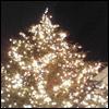 Аватар Новогодняя елочка
