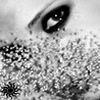 Аватар глаза (© ), добавлено: 09.05.2008 12:10