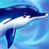 Аватар дельфин