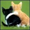 Аватар любовь (© ), добавлено: 03.05.2008 19:54