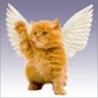 Аватар ангел (© ), добавлено: 03.05.2008 19:59