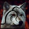Аватар тату волка
