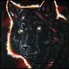 Аватар черный волк
