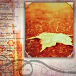 Аватар Осенний листочек