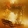 Аватар одинокая осень (© Mirrorgirl), добавлено: 30.09.2008 09:22