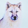 Аватар Волк (© Mirrorgirl), добавлено: 07.02.2009 23:42