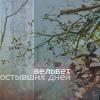 Аватар вельвет остывших дней (© Mirrorgirl), добавлено: 17.02.2009 12:34