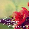 Аватар весна (© Mirrorgirl), добавлено: 23.03.2009 22:03