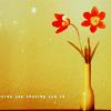 Аватар цветы (© Mirrorgirl), добавлено: 30.03.2009 15:47