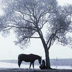 99px.ru аватар диалог под деревом