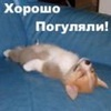 Аватар хорошо погуляли (© Алюська), добавлено: 03.05.2009 00:37