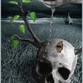 Аватар живая вода и череп (© Radieschen), добавлено: 10.05.2009 12:01