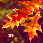 Аватар Осень