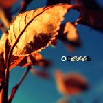 Аватар Осень (© Mirrorgirl), добавлено: 21.05.2009 16:30