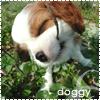 Аватар doggy (© Lonetka), добавлено: 04.06.2009 20:09