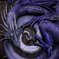 Аватар Спящий синий дракон (© Radieschen), добавлено: 12.06.2009 11:06