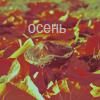 Аватар Осень (© Mirrorgirl), добавлено: 13.06.2009 22:55
