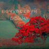 Аватар Почувствуй осень (© Mirrorgirl), добавлено: 13.06.2009 23:09