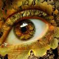 Аватар текстура, карий глаз (© Radieschen), добавлено: 15.06.2009 13:46