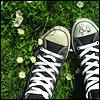 Аватар Кеды на травке (© Lonetka), добавлено: 17.06.2009 09:03