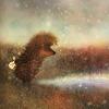 Аватар Ежик в Тумане (© папайя), добавлено: 04.07.2009 01:39