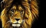 Аватар Огненный лев (© Anatol), добавлено: 14.07.2009 17:43