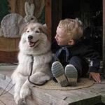 Аватар Мальчик с собакой (© Arabeska), добавлено: 20.07.2009 15:48