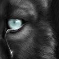 Аватар волчьи слезы (© Radieschen), добавлено: 12.08.2009 18:23
