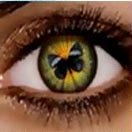 Аватар Бабочка в зрачке (© Ангел), добавлено: 02.09.2009 15:24