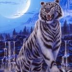 99px.ru аватар Тигр на фоне водопадов