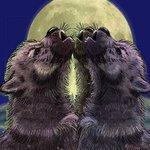 Аватар Воющие волчата (© Anatol), добавлено: 06.10.2009 16:14