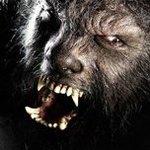 Аватар Человек-волк (к/ф The Wolfman)-2 (© Anatol), добавлено: 07.12.2009 01:22