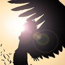 Аватар тень ангела