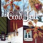 ������ God Jul! (� Anatol), ���������: 25.12.2009 00:44