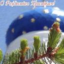 Аватар Церковь, еловая ветка, с рождеством Христовым! (© Radieschen), добавлено: 03.01.2010 08:34