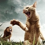Аватар Кот и Лев