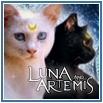 Аватар Luna_Artemis