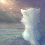 Аватар Кот смотрит на небо (© ColniwKo), добавлено: 19.01.2010 18:13