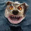 Аватар Злая собака (© Юки-тян), добавлено: 22.03.2010 12:15