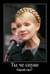 Аватар -Ты че сцуко, какой газ? Ю. Тимошенко (© Anatol), добавлено: 13.04.2010 15:04