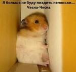 Аватар Я больше не буду пи***ть печеньки.... Чесна-чесна (хомячок застрял между шкафами) (© Sia), добавлено: 14.04.2010 00:12
