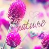 Аватар Nature (spring) (© Achika), добавлено: 03.05.2010 20:18
