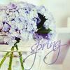 Аватар spring... (© Achika), добавлено: 03.05.2010 20:19