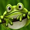 Аватар Лягушка-зеленушка