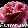 Аватар Екатерина