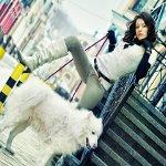 Аватар Девушка с собакой (© Штушка), добавлено: 22.09.2010 22:13