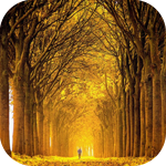 Аватар Таинственный лес (© Штушка), добавлено: 25.09.2010 21:50